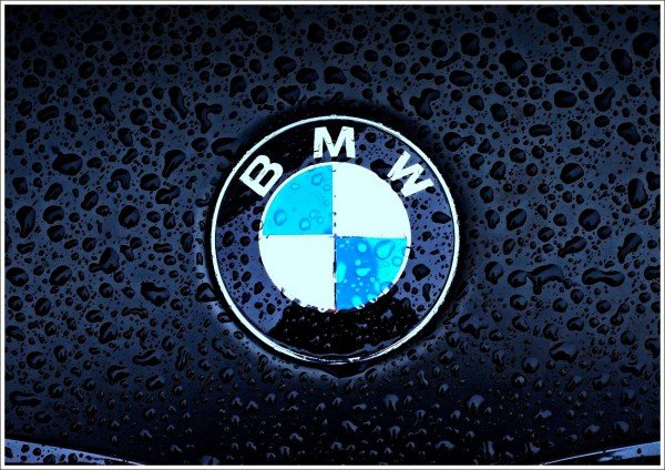 BMW logo description