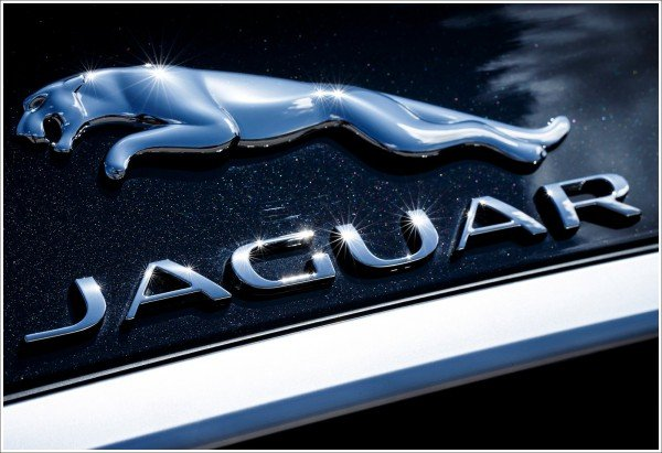 Jaguar car emblem