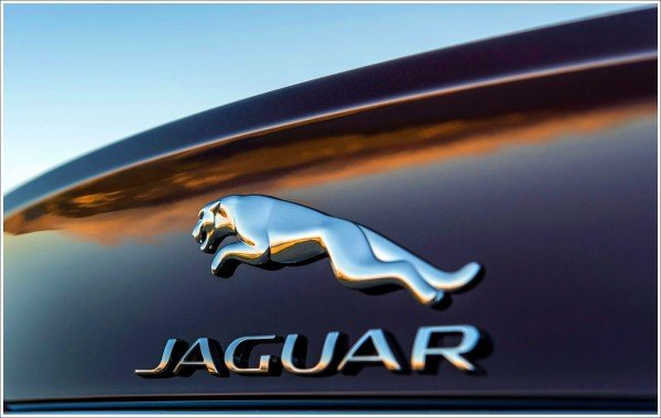 Jaguar Logo Colors