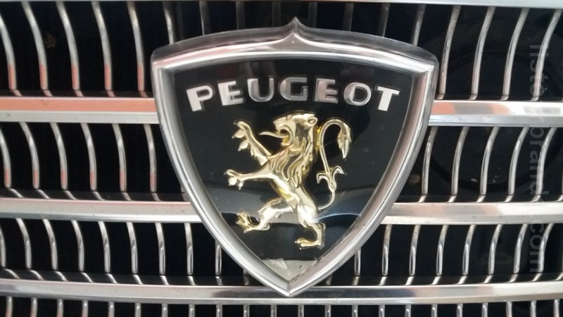 Peugeot Logo Meaning And History Latest Models World Cars Brands