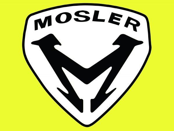 Color Mosler logo